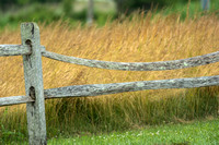 20150709_105945-fence