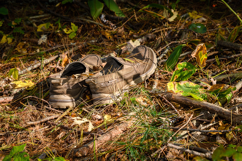 Shoe in the Woods